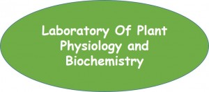 LABORATORY OF PLANT PHYSIOLOGY AND BIOCHEMISTRY